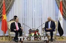 越南国家主席陈大光会见埃及议会议长