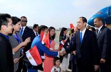 越南国家主席陈大光埃塞俄比亚和埃及行圆满结束