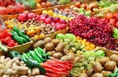 中国依旧是越南蔬果最大出口市场