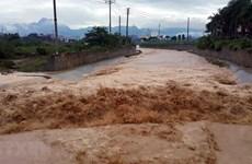 越南西北地区多省出现暴雨至大暴雨天气 造成重大损失