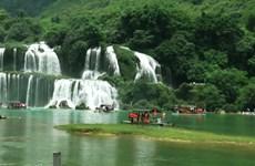 第二次高平省板约瀑布旅游节将于10月份举行