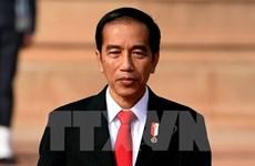印尼与越南经贸合作潜力持续释放