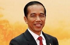 大力推动越南与印尼战略伙伴关系发展
