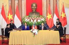 越南国家主席陈大光与印尼总统佐科会见记者