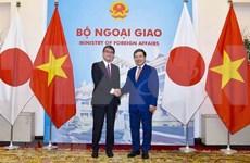 越南政府副总理兼外交部长范平明同日本外务大臣河野太郎举行会谈