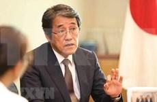 越日建交45周年:日本高度重视对越关系