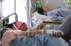 年初至今河内市已有950多人感染登革热