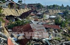 越南为印尼人民救灾赈灾提供10万美元的援助