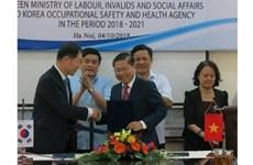 越南与韩国加强职业安全与卫生领域的合作