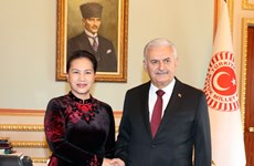 越南国会主席阮氏金银与土耳其议会议长比纳利·耶尔德勒姆举行会谈