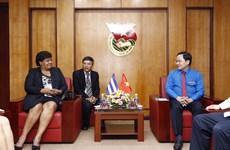 古巴共产党代表团表示将与越南共青团加强交流