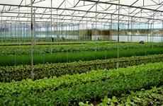 多国企业将越南视为智慧农业的投资乐土