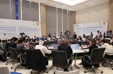 世界科技城市联盟第16届市长论坛在平阳省举行