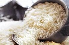 缅甸2018财年过渡期大米出口量达100多万吨