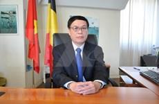 着力促进越南与欧洲全面合作关系