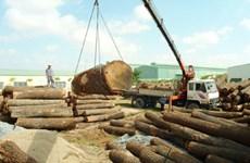美国、日本和中国仍是越南木制品三大出口市场
