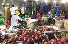 推动越南集体经济发展