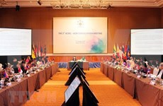 东盟妇女委员会与东盟促进和保护妇女和儿童权利委员会第五次磋商召开