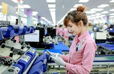 受中美贸易战的影响越南手机及零配件出口额大幅下降