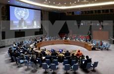 """越南出席""""水、和平与安全""""非正式辩论会"""