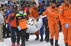 越南领导人就印尼客机坠海事件致慰问电