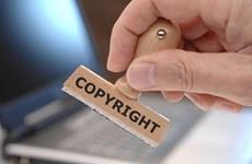 数字环境下的版权管理和保护措施