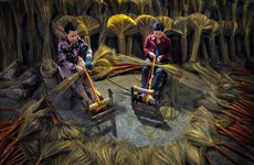 越南遗产摄影大赛获奖作品展览会亮相观众