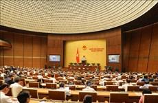 第十四届国会第六次会议: 国会就批准CPTPP问题进行讨论