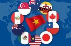 《全面且先进的跨太平洋伙伴关系协定》——越南发展事业的机遇和挑战