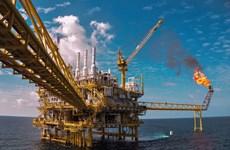今年前10月越南国家油气集团石油开采量达1171万吨 超额完成计划