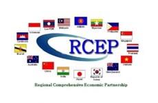 """东盟国家正努力将印度""""拉""""入《区域全面经济伙伴关系协定》"""