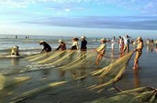 清化省同步发展海洋经济的5大支柱产业