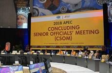 越南出席2018年APEC高官会总结会议