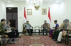 越南与印尼加强合作关系
