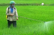 中国是越南农药及原材料的主要来源地