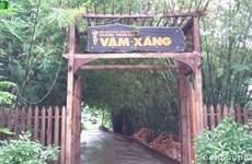 芹苴市丰田县的旺桑果园