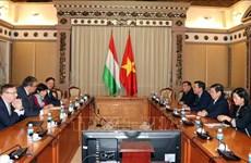 胡志明市与匈牙利加强经济合作