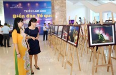 """""""祖国海洋岛屿""""图片展在岘港开展"""