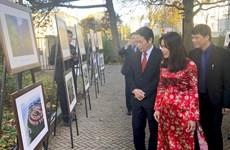 庆祝越荷建交45周年图片展在荷兰举行