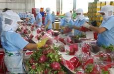 为越南与印度贸易关系向前迈进搭建桥梁