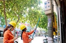 胡志明市电力总公司荣获全球性别平等认证