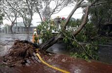 第九号台风给南部各省市造成损失巨大