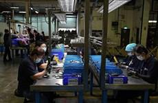 2018年10月新加坡制造业产出增长4%
