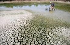 越南应加强气候变化的宣传力度