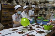 韩越加强传统医学领域研究与合作