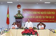 政府总理阮春福:嘉莱省需继续提高森林覆盖率