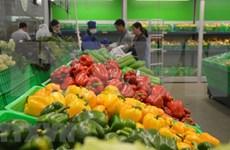 前11月中国是越南蔬果最大出口市场