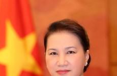 越南国会主席阮氏金银启程对韩国进行正式访问