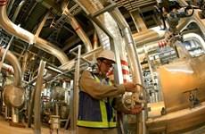 越美促进电气领域合作发展