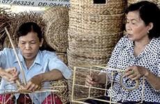 坚江省对10800名农村劳动者进行职业技能培训